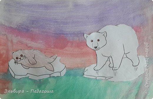 Животные Арктики фото 15