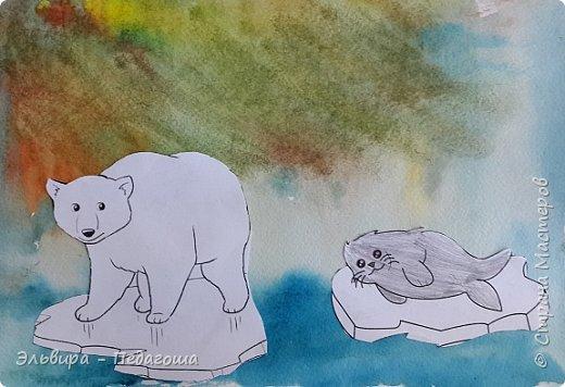 Животные Арктики фото 16