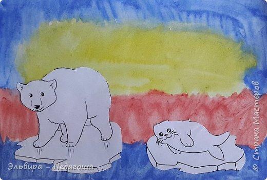 Животные Арктики фото 18