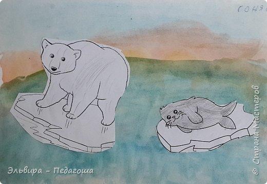 Животные Арктики фото 17