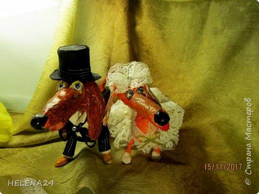 У людей Новый Год,а у меня таксы женятся....Это всё Жулька виновата.Не захотела как все свитер и юбку......а пока я ей тут фасончики предлагала,она и вовсе с Жулем познакомилась и замуж захотела.... фото 1