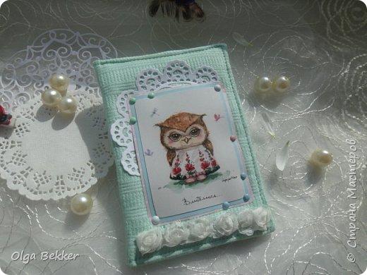 Обложка была сделана для юной девочки для ее первого паспорта. Обложка изготовлена из нежного голубого цвета и с милейшей совушкой