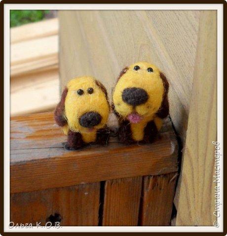 разные валяные собачки фото 5