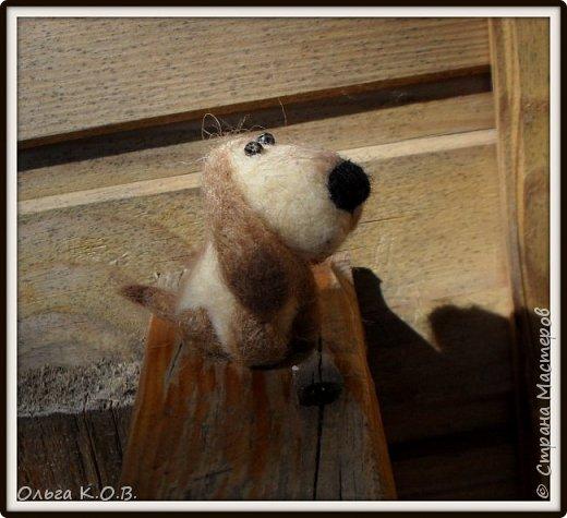 разные валяные собачки фото 15