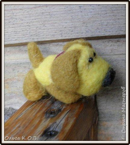 разные валяные собачки фото 28