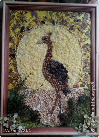 Здравствуйте. Хочу показать вам нашу с сыном поделку, в школу на конкурс осенних поделок из природных материалов. Картина сделана из сухих листьев, гречки кукурузной крупы, пшеничных зерен и сушоной травки и цветов гартензии. Ещё арбузных семечек. фото 2