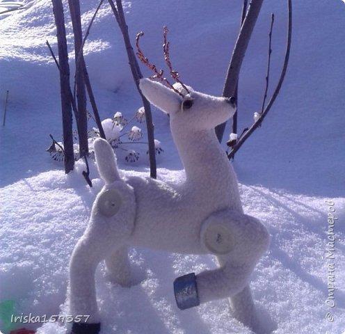 С детства моей самой любимой зимней сказкой остается «Серебряное копытце» Бажова П.П. Это таинственно-волшебная сказка с нотками ностальгии, которая помогает верить в чудеса и как никакая другая подходит к ожиданию главных зимних чудес — самых любимых праздников, Нового года и Рождества! «— Тот козёл особенный. У него на правой передней ноге серебряное копытце. В каком месте топнет этим копытцем, там и появится дорогой камень. Раз топнет — один камень, два топнет — два камня, а где ножкой бить станет — там груда дорогих камней» фото 2