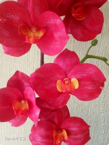 очень захотелось сделать орхидеи! фото 4