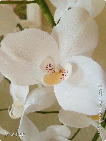 очень захотелось сделать орхидеи! фото 12