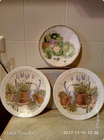 Здравствуйте, уважаемый мастерицы! Это мои первые тарелки. Сделала я их для дачи. Поэтому и мотив такой огородный. Тарелки делала из газет. Декупаж салфетки. фото 1