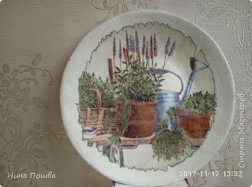 Здравствуйте, уважаемый мастерицы! Это мои первые тарелки. Сделала я их для дачи. Поэтому и мотив такой огородный. Тарелки делала из газет. Декупаж салфетки. фото 4