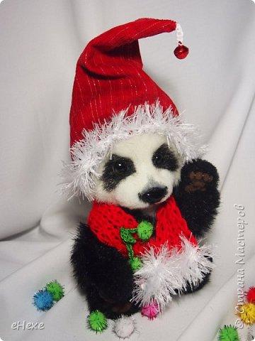 Кеша тоже решил поучаствовать в Рождественское тедди-шоу. фото 2