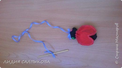 дидактическая игра «Веселые Насекомые» Материал: ткань, синтепон или поролон, цветная верёвка и палочка. Использование: для закручивания, игр – соревнований, как ориентир при ходьбе, беге или построениях, как сюрпризный и игровой момент. Цель: Развитие мелкой моторики рук, равновесия, развития речи, сенсорики, ориентировки, терпения и воли.  фото 3