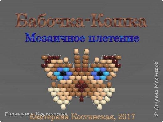 Марафон Плетения Бисерных Бабочек. Бабочка № 5 - Кот.