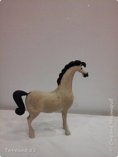 """Здравствуйте всем кто заглянул. Все собачек делают а мня на лошадок тянет.  Знакомьтесь ,,Мадам"""" . фото 5"""