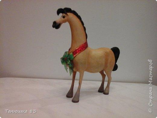 """Здравствуйте всем кто заглянул. Все собачек делают а мня на лошадок тянет.  Знакомьтесь ,,Мадам"""" . фото 1"""