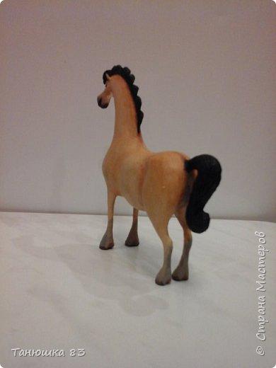 """Здравствуйте всем кто заглянул. Все собачек делают а мня на лошадок тянет.  Знакомьтесь ,,Мадам"""" . фото 7"""