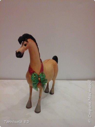"""Здравствуйте всем кто заглянул. Все собачек делают а мня на лошадок тянет.  Знакомьтесь ,,Мадам"""" . фото 8"""