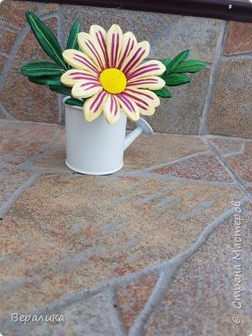 Такой цветочек газании (гацании) вырастила из бумажных полосок. Ширина полосок 2мм. сам цветочек размером в 5см. Уж очень красиво и разнообразно цвели эти цветы у меня на клумбе. Захотелось повторить в бумаге их красоту. Получилось или нет- судить вам, дорогие мастерицы. Перед тем, как делать немахровые хризантемы, которые многим мастерицам понравились, я опробовала для себя новый способ изготовления более натуральных цветочков вот на этом самом цветочке ГАЗАНИИ. фото 1