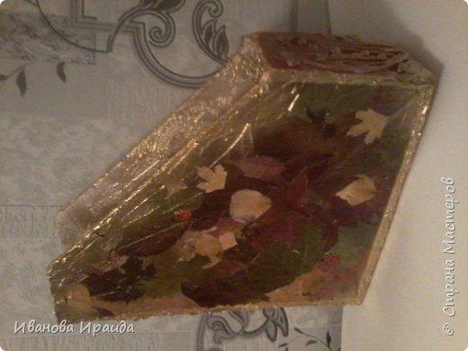 Работу выполнила девочка Милена 2класс. Работа выполнена из сухих листьев и покрыта аэрозольной краской фото 3