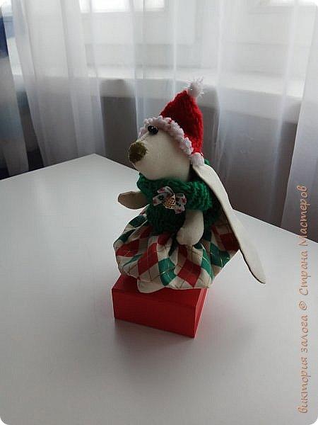 Маленькая помощница Санта-Клауса фото 3