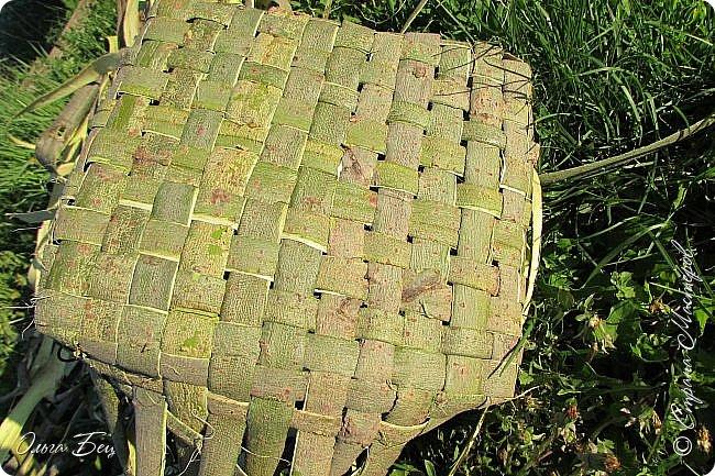 Добрый день! Встречаю вас душистой лесной клубникой в плетёном коробе из ивового  лыка:) фото 5