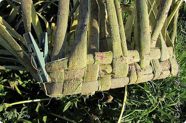 Добрый день! Встречаю вас душистой лесной клубникой в плетёном коробе из ивового  лыка:) фото 3