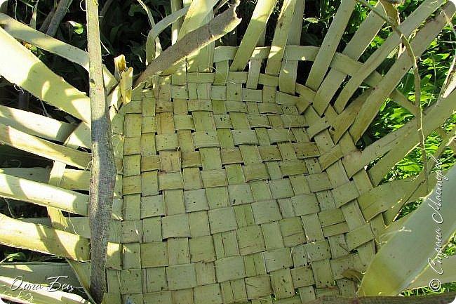 Добрый день! Встречаю вас душистой лесной клубникой в плетёном коробе из ивового  лыка:) фото 4