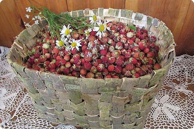 Добрый день! Встречаю вас душистой лесной клубникой в плетёном коробе из ивового  лыка:) фото 12
