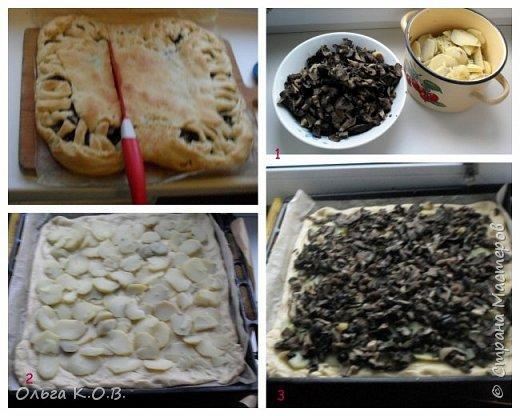 Пирог с солеными грибами, чесноком и вареной картошкой фото 2