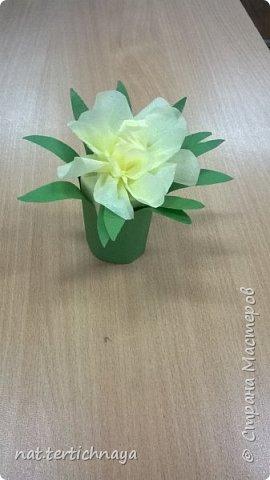 Добрый день всем жителям Страны Мастеров! Эти цветочные букетики мы сделали с ребятами 6 класса ко Дню Матери по описанию Татьяны Николаевны Просняковой. По ее мастер- классу. Спасибо ей большое! фото 3