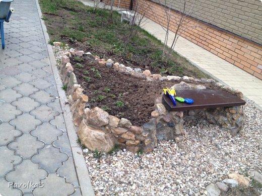 Просто скамеечку -скучно, хочется сидеть, на прудик смотреть и земляничку с куста срывать. Камни собраны на поле, отсортированы и пущены в дело. Самый обычный раствор: цемент-песок-вода и вперёд. Под скамейку дугу выложила кирпичей, потом кирпич «облицевала» камнем. Скамья - остатки от ступеней- лиственница- пропитала -покрасила-покрыла лаком, уже 3 сезон- пока жива. фото 1