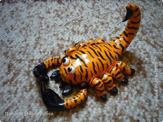 Скорпион тигристый