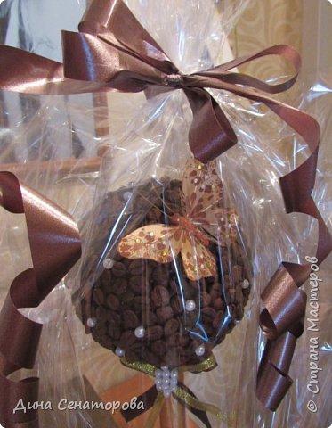 Топиарий из кофейных зёрен фото 2
