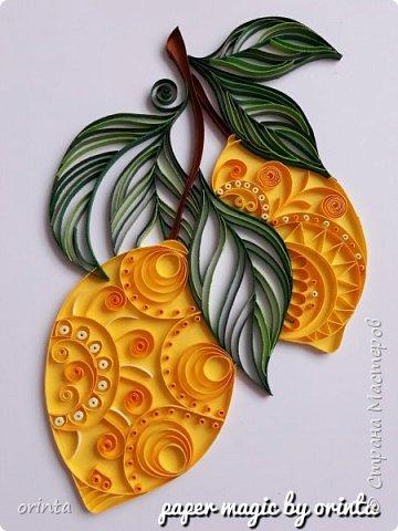 тропические фрукты фото 3