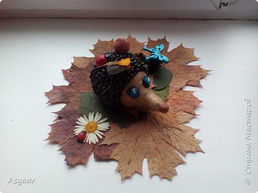 """Осенняя поделка""""Ежик"""" в детский сад фото 2"""