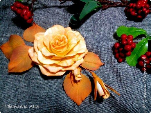 """Добрый, добрый день, дорогие феечки!                                                                                                                                                   Вот и осень за окном. Даже не осень, а уже зима.      """"Все вокруг белым-бело.    Белым снегом замело""""  Немного лирического отступления. А у нас вот такая яркая осенняя розочка. Выполнена из иранского фоамирана. Брошь с  нежно-оранжевой окраской цветка выглядит ярко и привлекательно на фоне тусклой и унылой погоды за окном.  фото 2"""