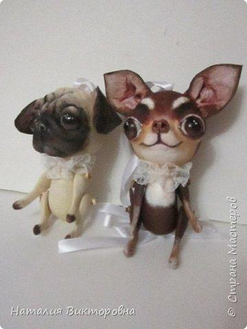Всем ,здравствуйте! Вот такие собачки у  меня получились! Лапки подвижные! фото 15