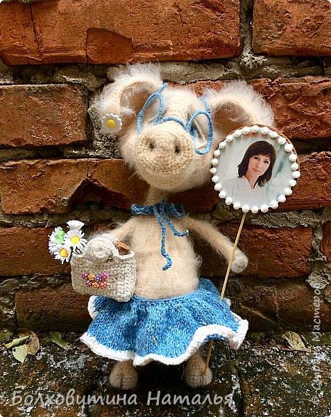 Свинка фото 9