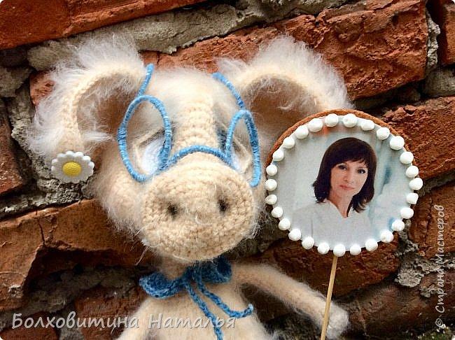 Свинка фото 12