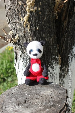 Большая панда фото 4