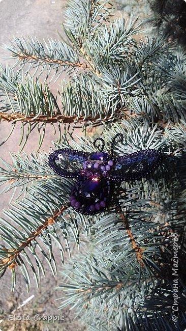 Броши насекомые.Муха,жучок и бабочка. фото 25
