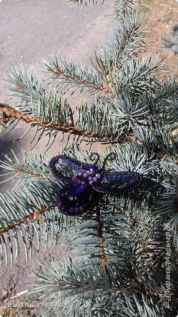 Броши насекомые.Муха,жучок и бабочка. фото 26
