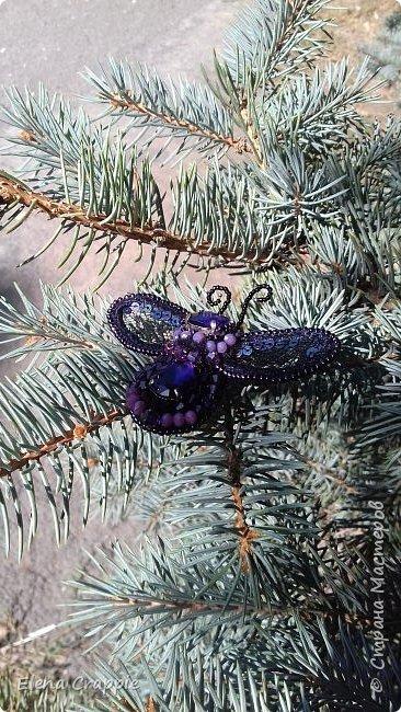 Броши насекомые.Муха,жучок и бабочка. фото 27