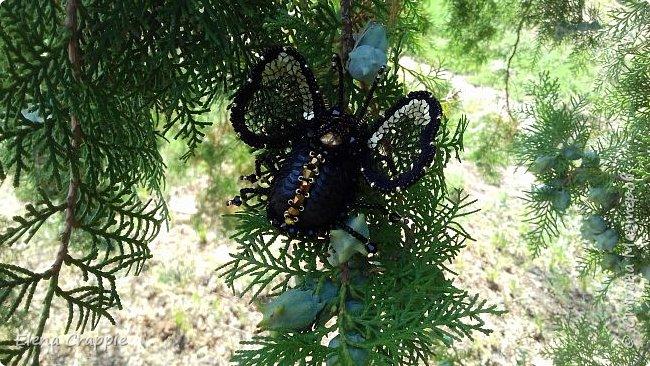 Броши насекомые.Муха,жучок и бабочка. фото 12
