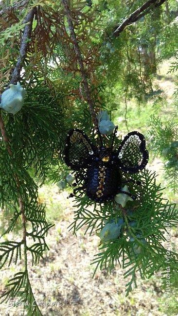 Броши насекомые.Муха,жучок и бабочка. фото 13