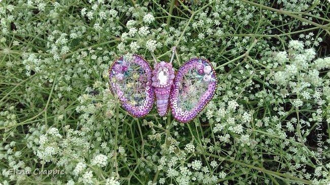 Броши насекомые.Муха,жучок и бабочка. фото 21