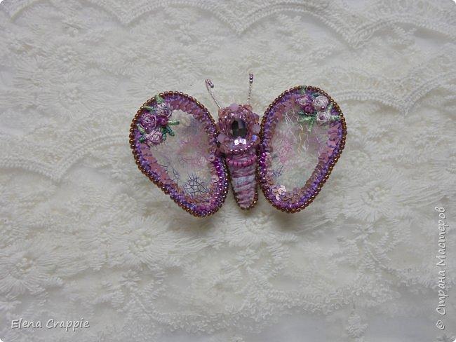 Броши насекомые.Муха,жучок и бабочка. фото 16