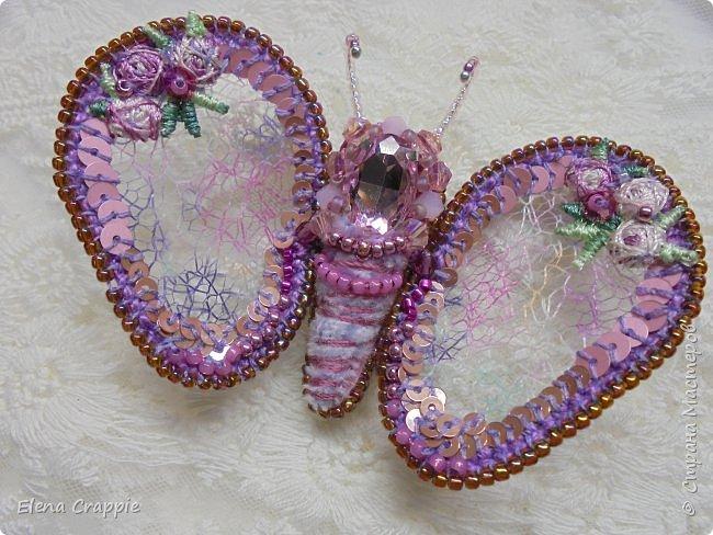 Броши насекомые.Муха,жучок и бабочка. фото 17