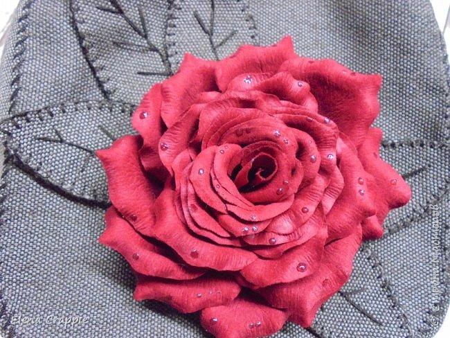 Роза   фото 7